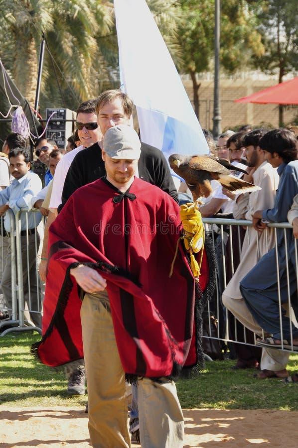 Argentyński sokolnik obrazy royalty free