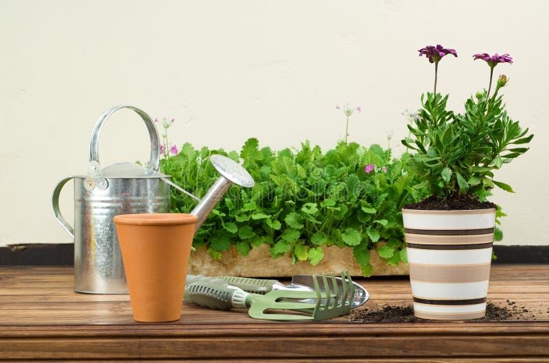 Argila e potenciômetros de flor cerâmicos fotografia de stock