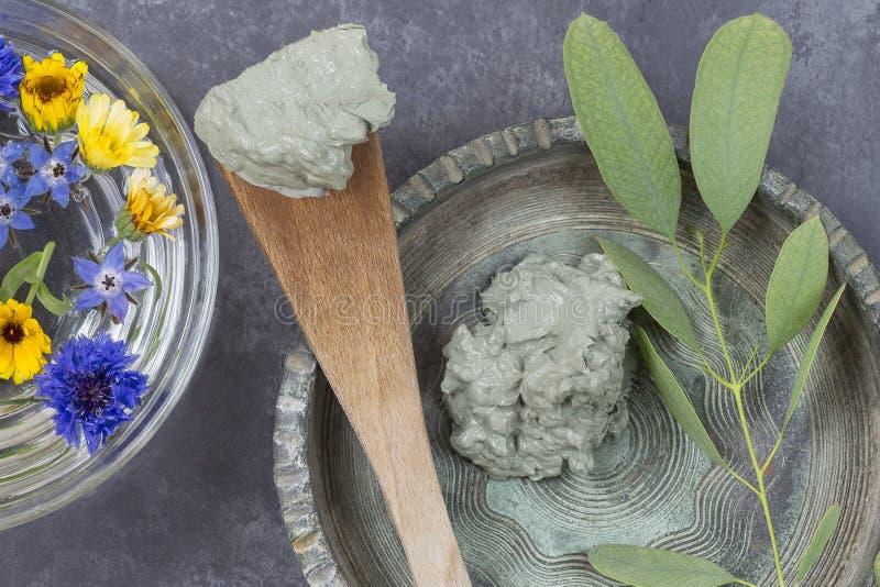 Argilla e fiore cosmetici in ciotola di vetro e nel ramo di eucalyptus, per i trattamenti della stazione termale, nel fango ceram immagine stock