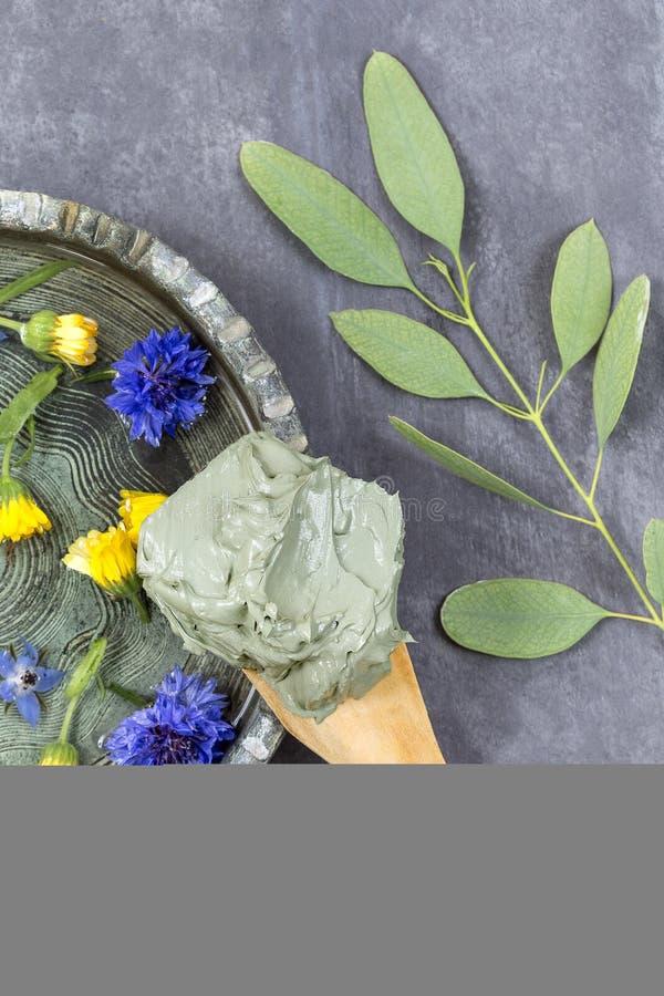 Argilla e fiore e ramo cosmetici dell'eucalyptus, per i trattamenti della stazione termale, nel fango ceramico del piatto sul cuc immagine stock