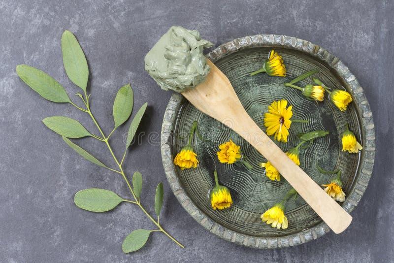 Argilla e fiore e ramo cosmetici dell'eucalyptus, per i trattamenti della stazione termale, nel fango ceramico del piatto sul cuc immagine stock libera da diritti
