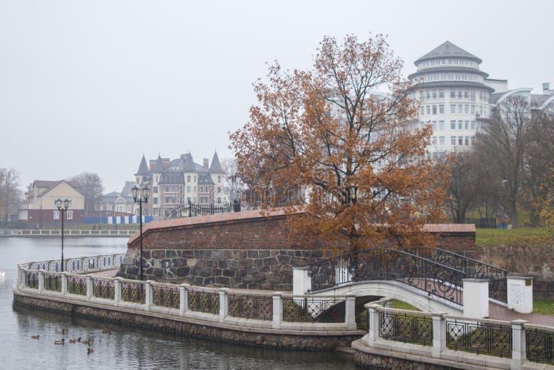 Argine dello stagno nella nebbia Kaliningrad fotografia stock libera da diritti