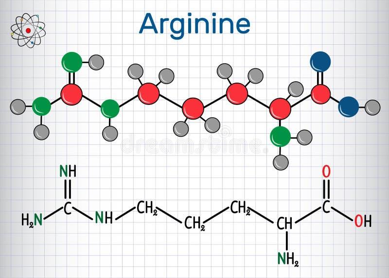 Arginine Arg, r-aminosyramolekylen, används det i biosynten vektor illustrationer