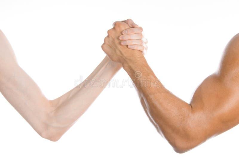 Argomento di forma fisica & di culturismo: mano sottile di braccio di ferro e grande forte un braccio isolato su fondo bianco in  immagini stock libere da diritti