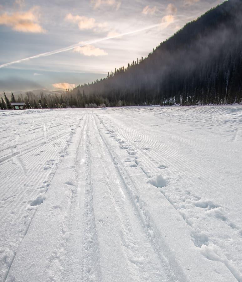 Argt land Ski Tracks Going Into Distance royaltyfri bild