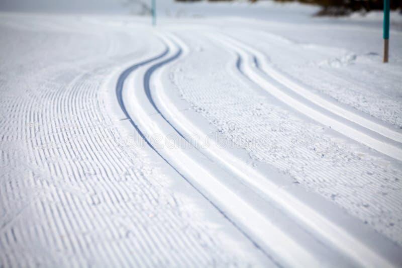 Argt land Ski Tracks i Engadin royaltyfria foton
