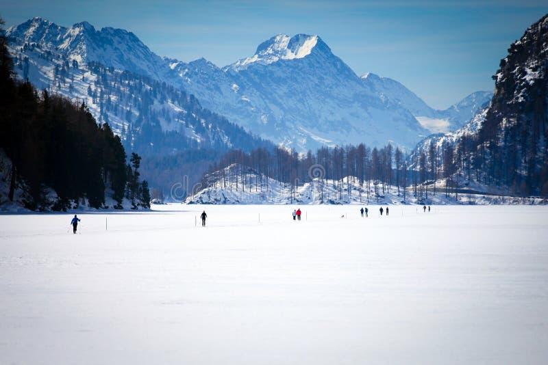 Argt land Ski Tracks i Engadin arkivbild