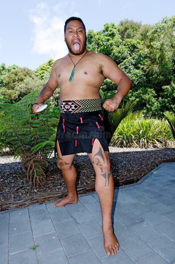 Argumentos del tratado de Waitangi imagenes de archivo