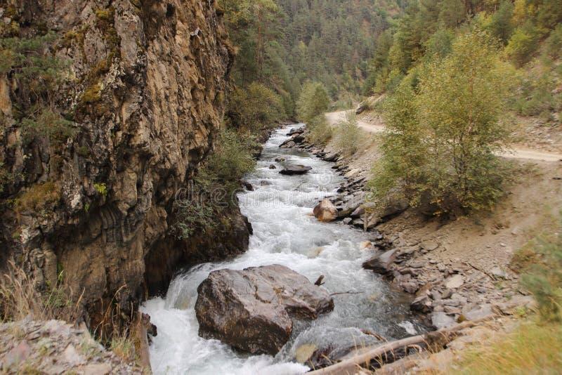 Argun flod & x28; Caucasus& x29; , Georgia royaltyfri bild