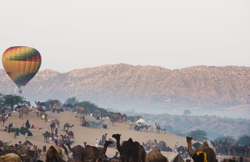 Aria calda un pallone sopra la terra giusta del cammello di Pushkar, Pushkar, Ajmer, fotografia stock