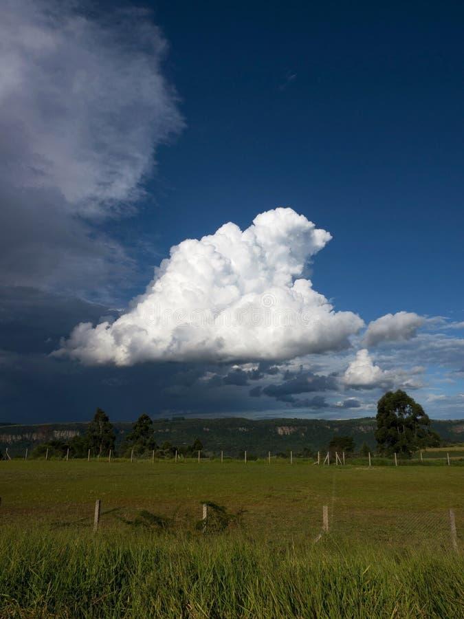 Aria rada naturale degli ambiti di provenienza della nuvola del cielo di Cloudscape della natura di estate di aria aperta di scen fotografia stock libera da diritti