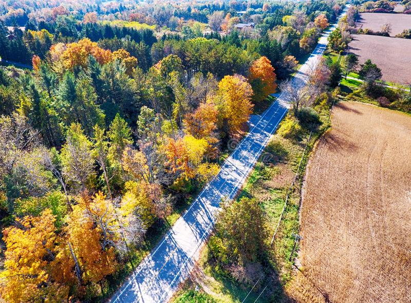 Arial veiw of rural road, fields and autumn trees. royalty free stock image