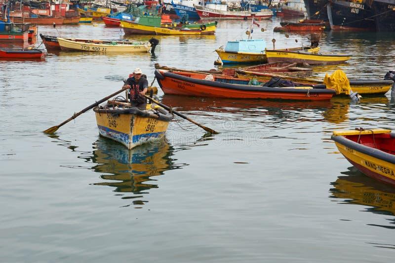 Arica fiskehamn arkivfoto