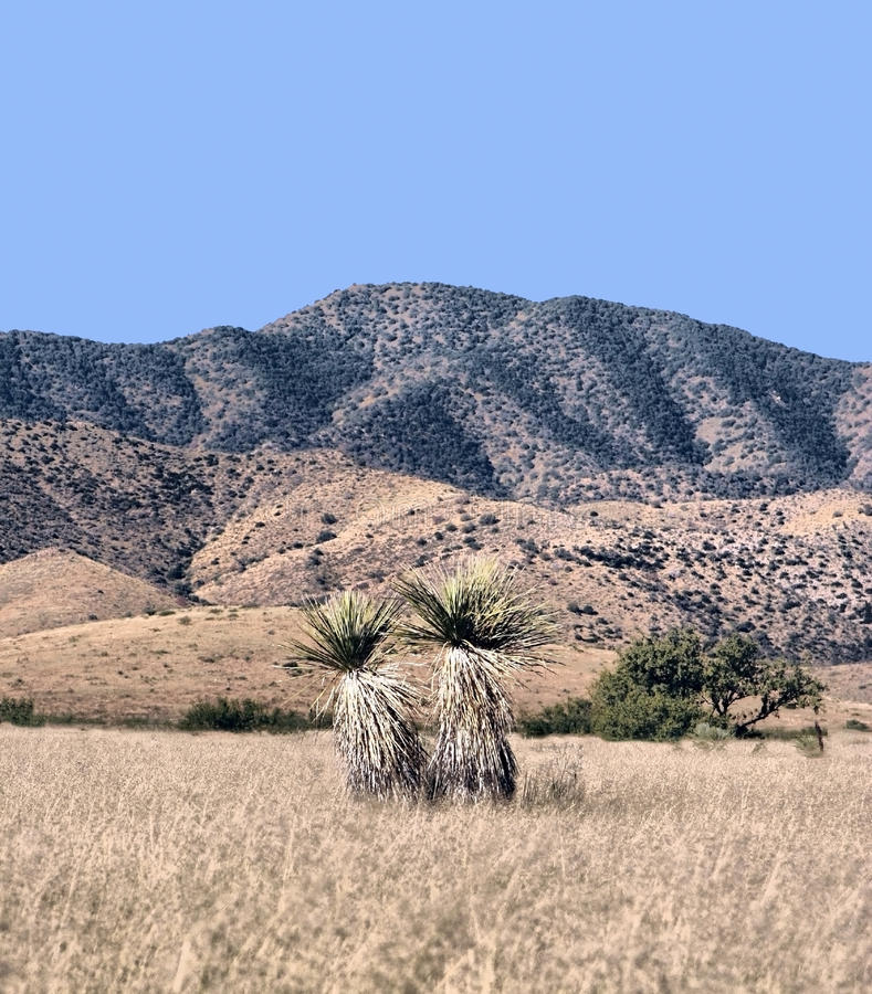 Arid landscape and mountains royalty free stock photography