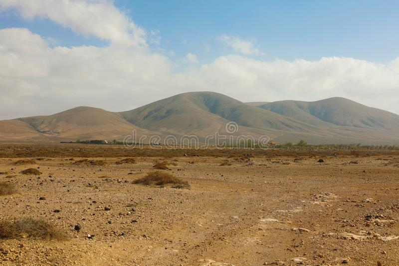 Arid region dry soil with rounded mountains on the background panoramic view on Furteventura Island.  stock photography