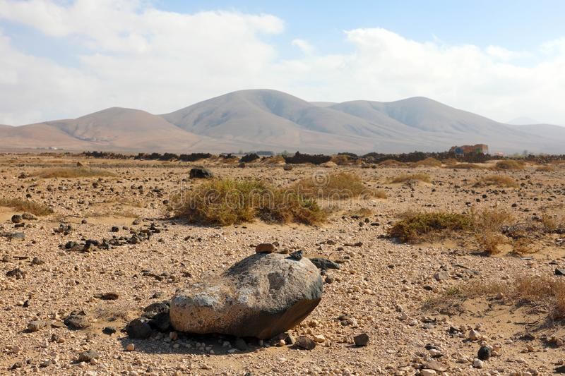 Arid region with rounded mountains on the background panoramic view on Furteventura Island.  royalty free stock images