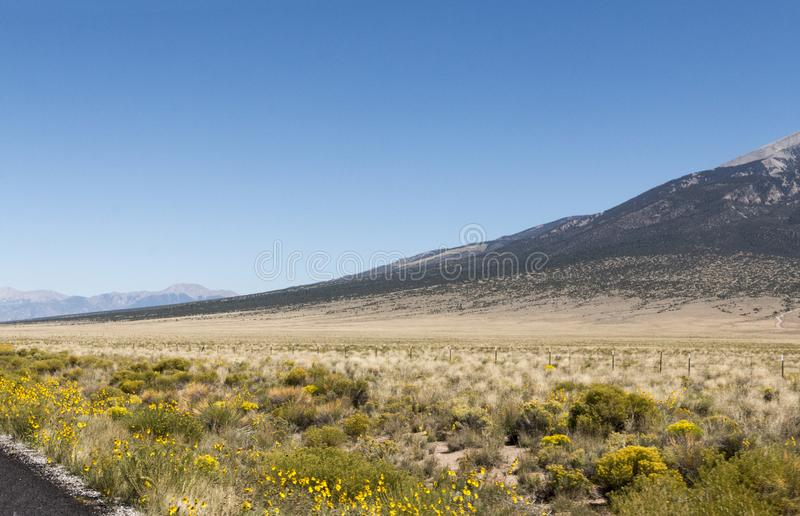Arid slope. The gradual sloping of a mountain in the southern portion of the Rocky Mountains royalty free stock images