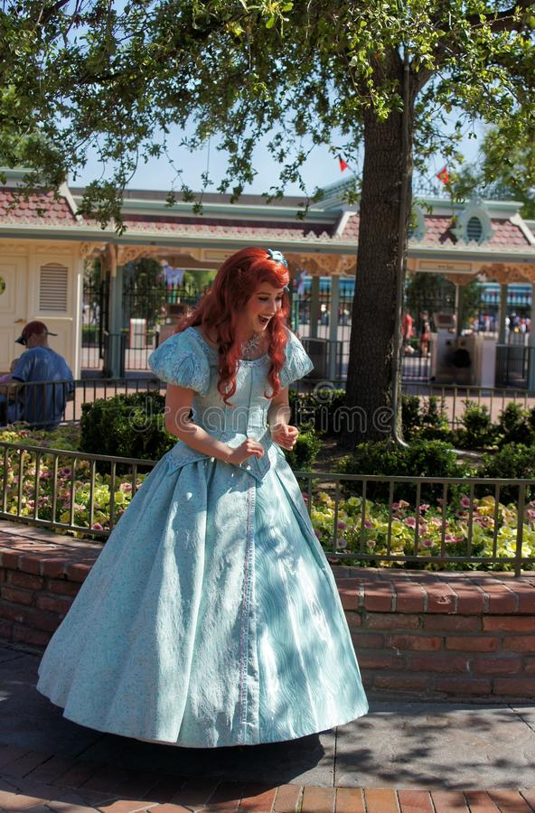 Ariel fotografia de stock