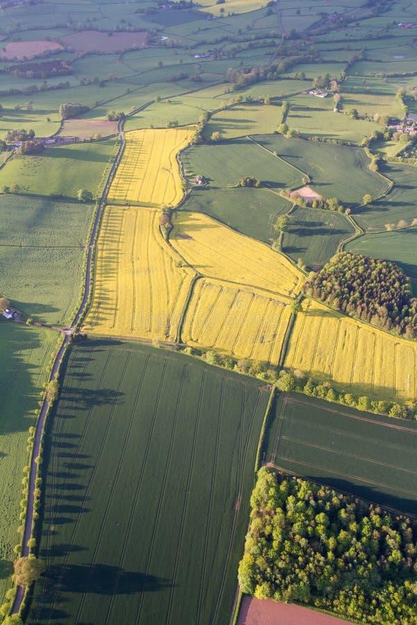 Ariel-Ansicht von Feldern und von Hecken lizenzfreie stockbilder