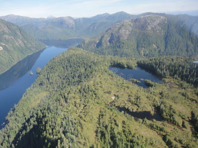 Ariel View av Misty Fjords i den Ketchikan Alaska Tongass nationalskogen arkivbild