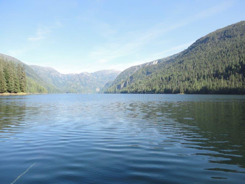 Ariel View de Misty Fjords fora de Ketchikan Alaska de um plano do flutuador Floresta tropical temperada com lagos e rios fotos de stock