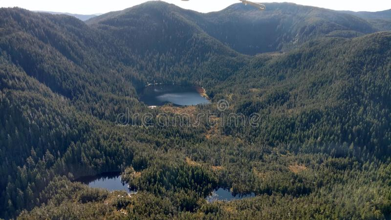 Ariel View de Misty Fjords na floresta nacional de Ketchikan Alaska Tongass imagem de stock