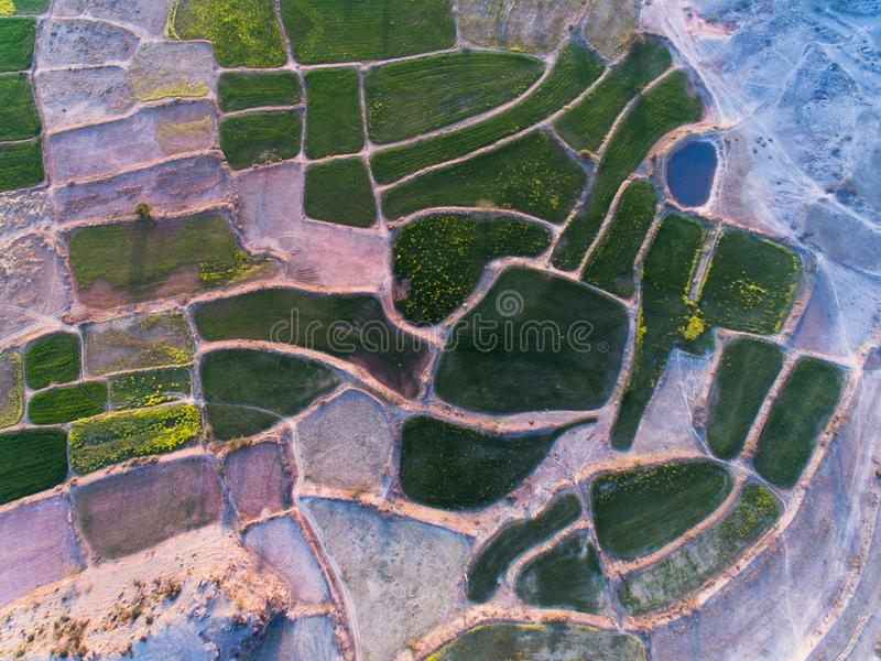 Ariel view of Farm lands and rocky area. Farm lands rocky area plateau pattern agri agriculture eco wheat crop mustard field farmer fields drone ariel view stock photos