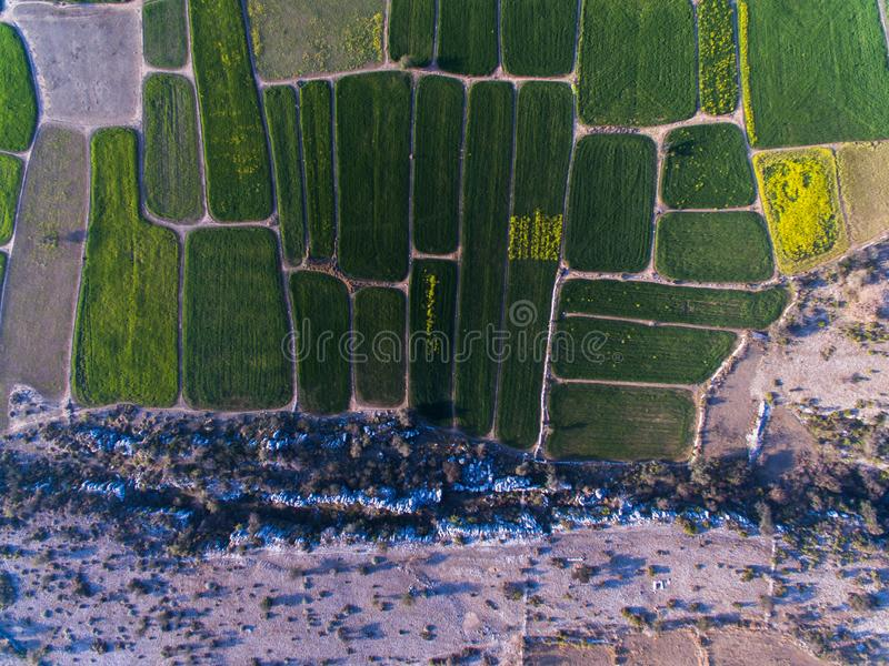 Ariel view of Farm lands and rocky area. Farm lands rocky area plateau pattern agri agriculture eco wheat crop mustard field farmer fields drone ariel view stock image