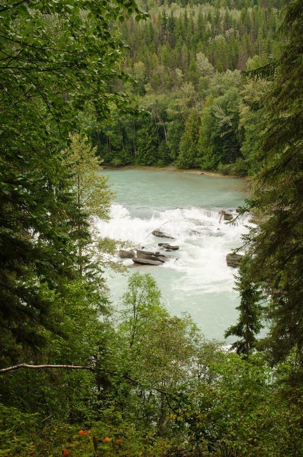 Ariergarda spadki Fraser rzeka zdjęcia stock