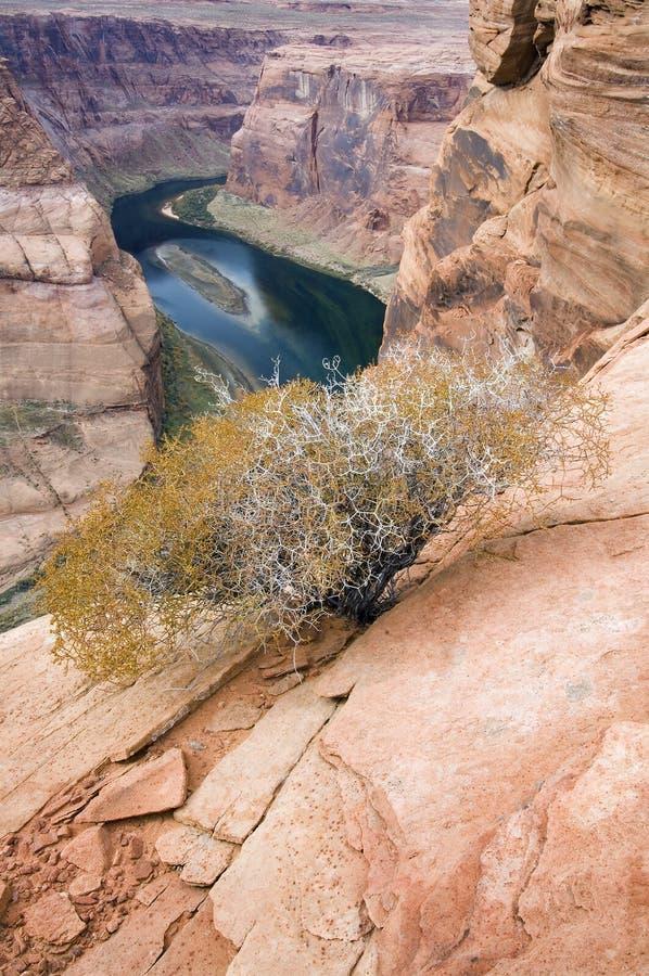 arizona bend podkowa z widokiem na stronę zdjęcia stock