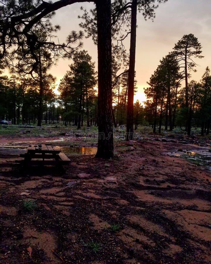Arizona campsite zdjęcia stock