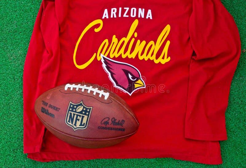 Arizona Cardinals NFL photographie stock