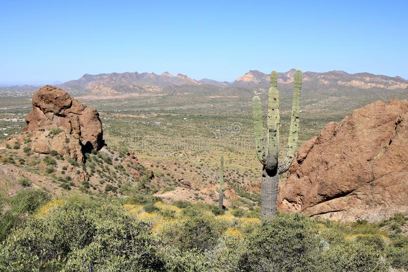 Arizona Desert Landscape. An overview of the Phoenix valley from the desert park near Superstition Mountains in Phoenix, Arizona royalty free stock photography