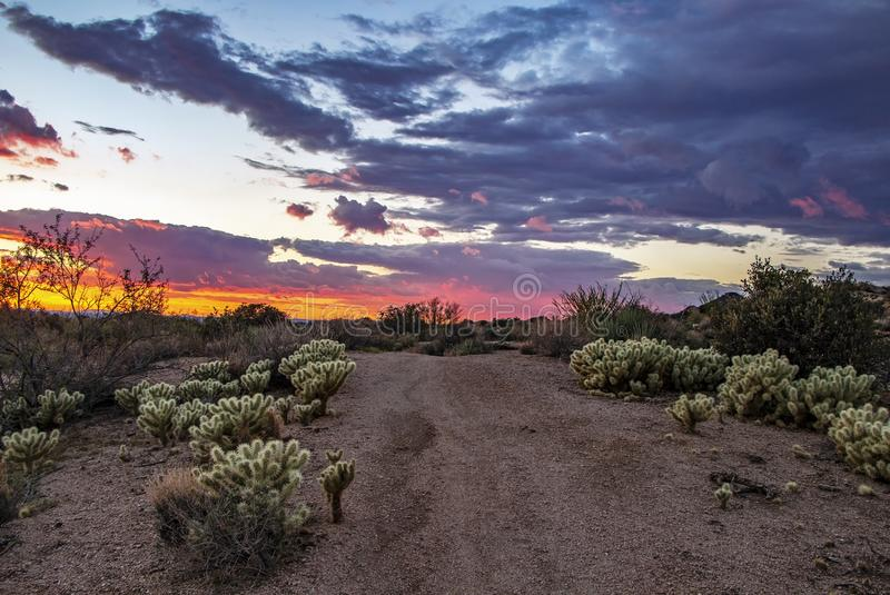 Vibrant Arizona Desert sunset trail to the horizon in Scottsdale royalty free stock photo