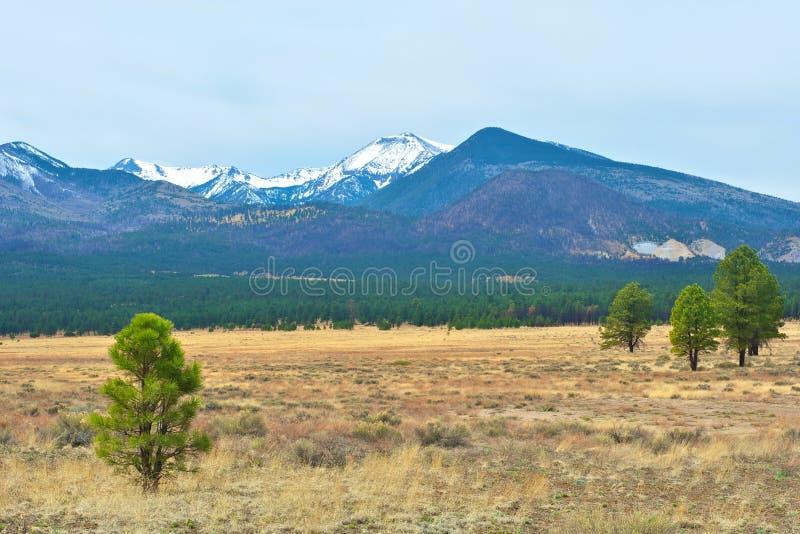 arizona nakrywał góra śnieg zdjęcie stock