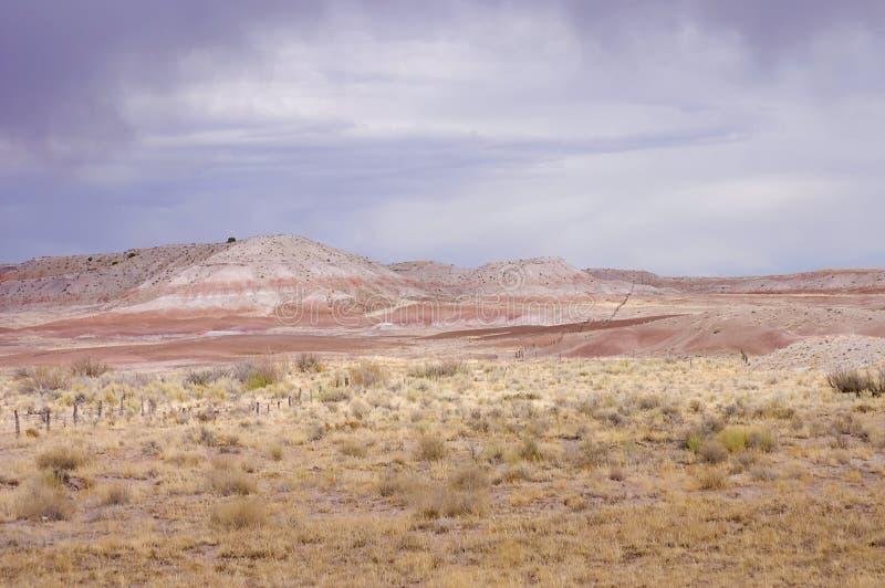 arizona pastellfärgad pinkish scenisk sikt royaltyfria bilder