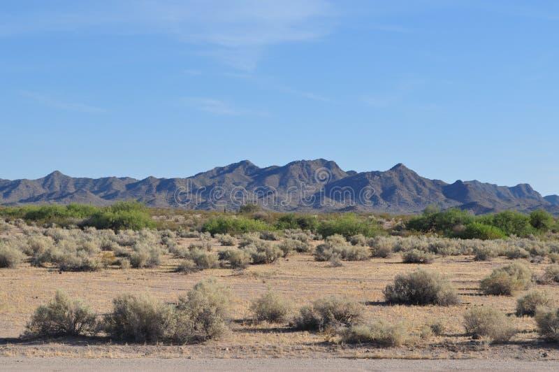 Arizona pustynia zdjęcie stock