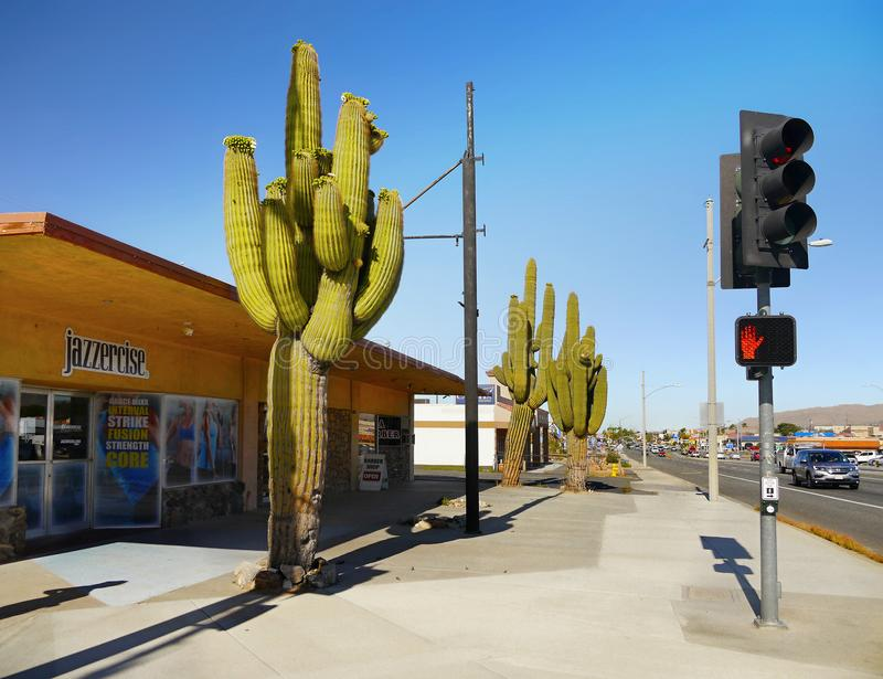 Arizona Road Transport, Traffic Light stock photos