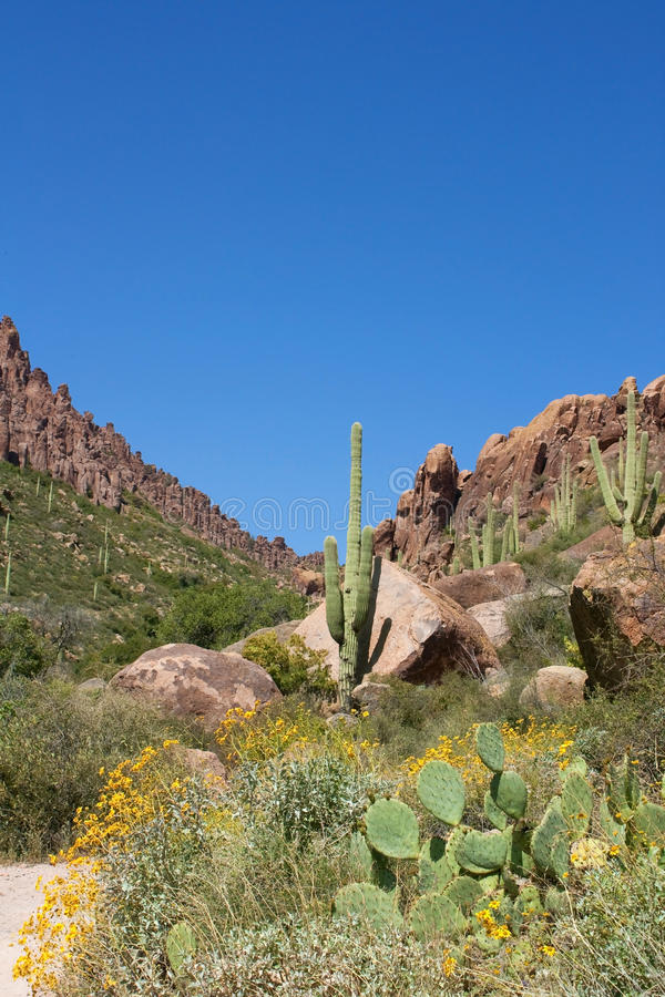 Download Arizona's Superstition Mountains Stock Image - Image: 12461785