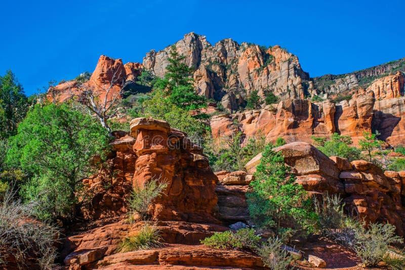 Arizona Sedona, den SlideRock delstatsparken, ekliten vik vaggar bildande och bergkanten arkivfoto