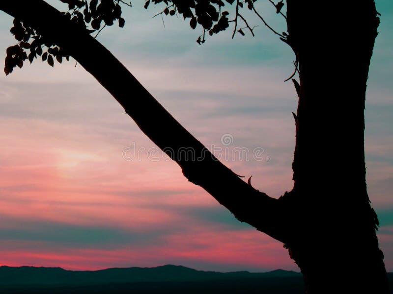 Arizona solnedgång royaltyfri fotografi