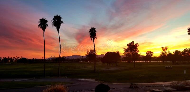 Arizona solnedg?ng arkivbilder