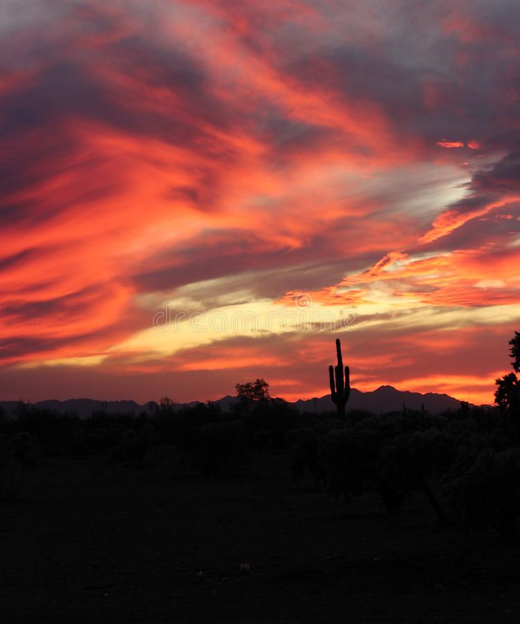 Arizona Sunset royalty free stock photos