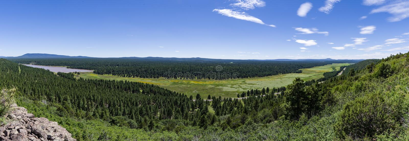 Arizona Trail: Anderson Mesa AZT-30 royalty free stock image