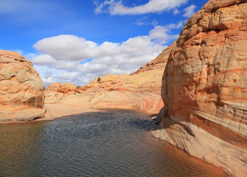Arizona/Utah: Kojote Buttes - seltsame Sandstein-Wüste nach Regen lizenzfreie stockfotos