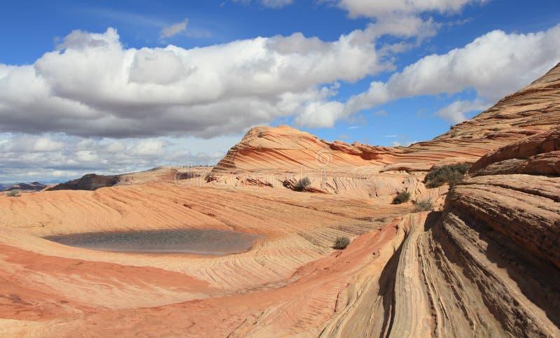 Arizona/Utah: Kojote Buttes - Wind-gemeißelte Sandstein-Landschaft nach Regen lizenzfreie stockfotos