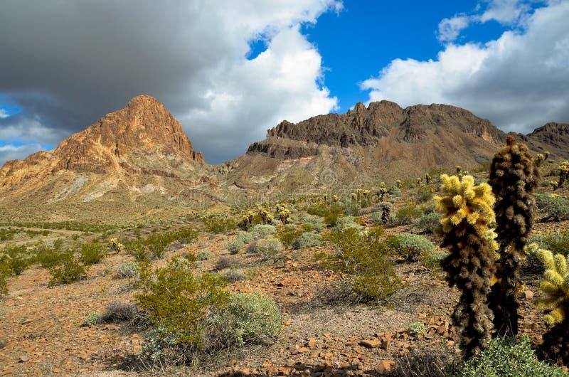 Arizona stock photos