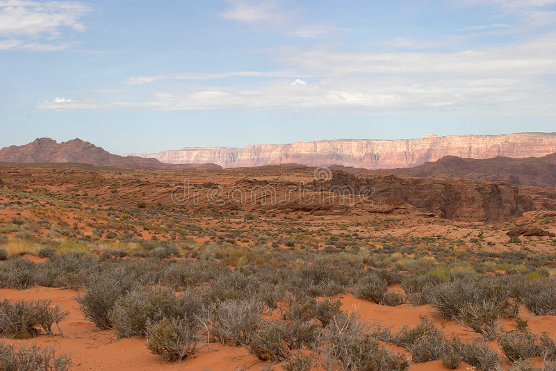 Arizona-Wüsten-Landschaft stockbild