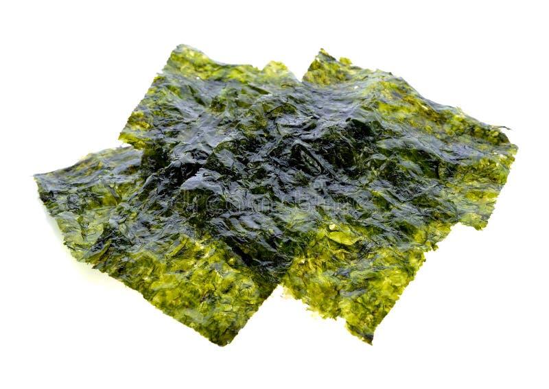 Ark av torkad havsväxt, frasig havsväxt arkivbilder
