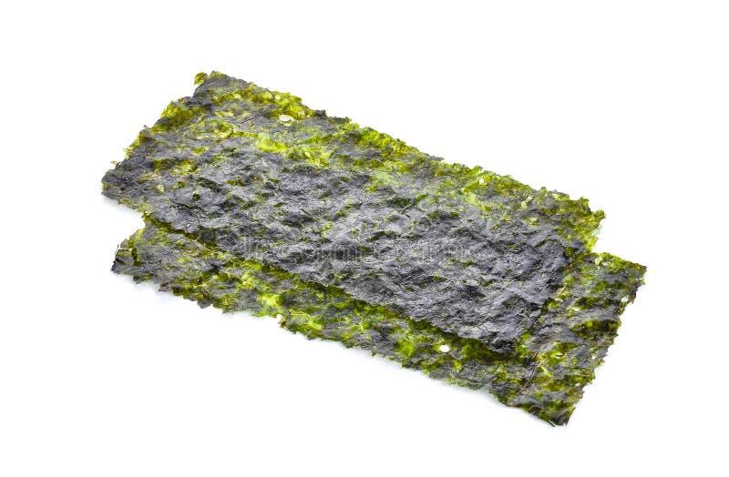 Ark av torkad havsväxt, frasig havsväxt som isoleras på den vita backgroen arkivbilder